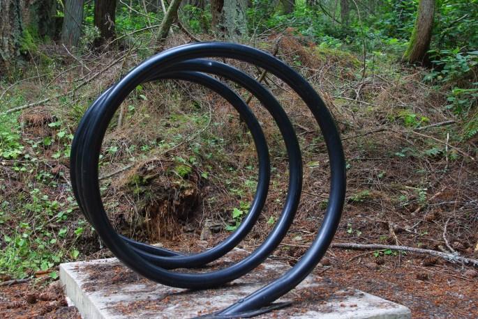 IMGP5203